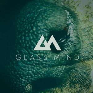 Glass Mind - Detritus CD (album) cover
